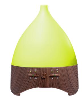 Fragrance Ultrasonic Cool Mist